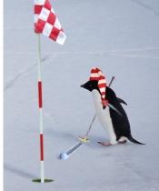 Frozen Tundra Golf