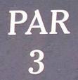 Par 3 at Renditions